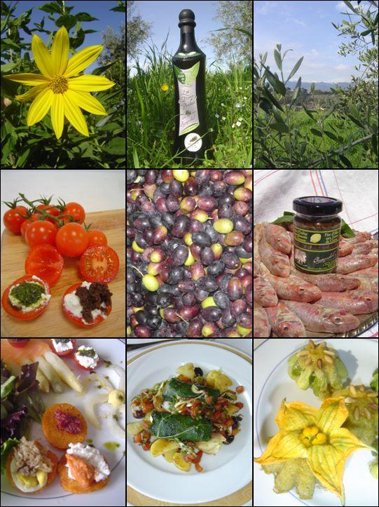 Olive de Nice - Condiments Bio - l'Art de vivre Méditerranéen - Champ Soleil